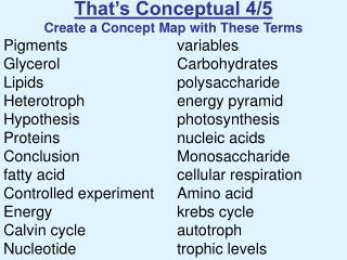 That s Conceptual 4