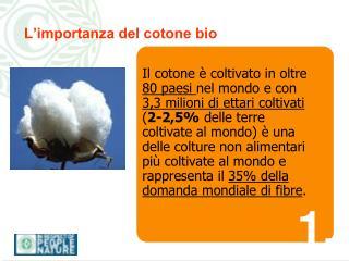 L'importanza del cotone bio