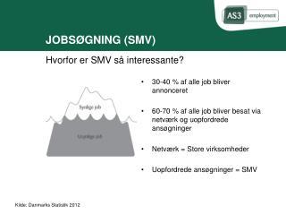 JOBSØGNING (SMV)