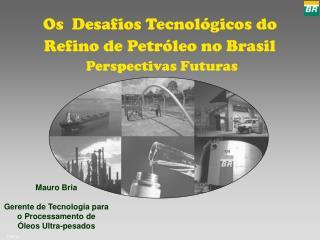 Os  Desafios Tecnol gicos do Refino de Petr leo no Brasil  Perspectivas Futuras