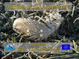 Habitats of the Luitemaa NR