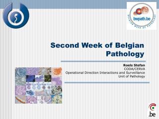 Second Week of Belgian Pathology