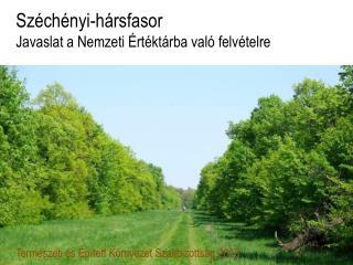 Széchényi-hársfasor Javaslat a Nemzeti Értéktárba való felvételre