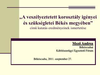 Me ző  Andrea Békéscsabai  Kábítószerügyi Egyeztető Fórum  Békéscsaba, 2011. szeptember 27.