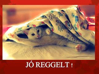 J� REGGELT !