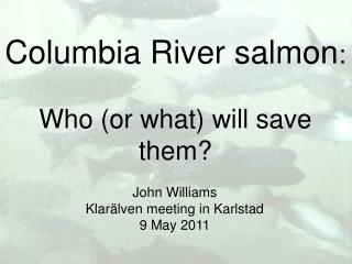 Columbia River salmon : Who (or what) will save them?