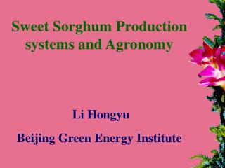 Sweet Sorghum Production systems and Agronomy  Li Hongyu Beijing Green Energy Institute