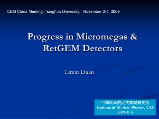 Progress in Micromegas & RetGEM Detectors