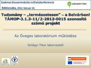 """Tudomány – """"természetesen""""  –  a  Belvárban ! TÁMOP-3.1.3-11/2-2012-0015 azonosító számú projekt"""