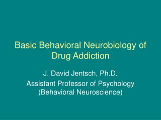 Basic Behavioral Neurobiology of Drug Addiction