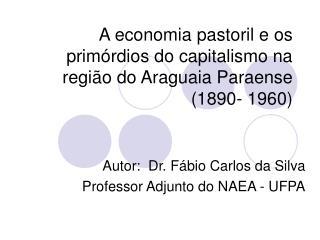 A economia pastoril e os primórdios do capitalismo na região do Araguaia Paraense (1890- 1960)