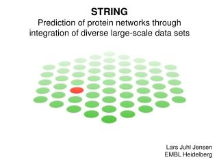 STRING Prediction of protein networks through integration of diverse large-scale data sets