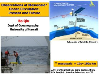 Observations of  Mesoscale * Ocean Circulation:  Present and Future