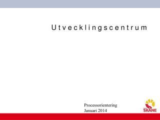 Processorientering Januari 2014
