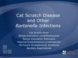 Cat Scratch Disease  and Other  Bartonella  Infections