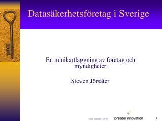 Datasäkerhetsföretag i Sverige