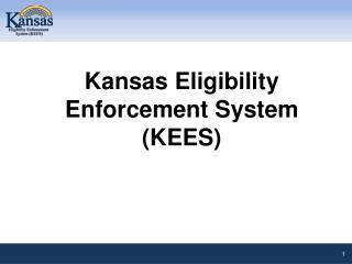 Kansas Eligibility Enforcement System (KEES)