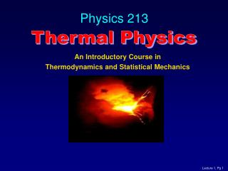 Physics 213