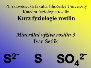 SO 4 2 -