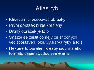 Atlas ryb