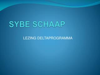 SYBE SCHAAP