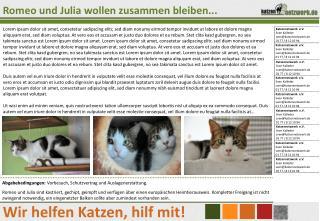 Katzennetzwerk  e.V. Sven Kalleder sven@katzennetzwerk.de 01 77 / 8 12 10 94