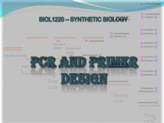 PCR AND PRIMER DESIGN