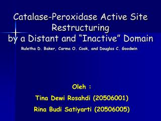 """Catalase-Peroxidase Active Site Restructuring  by a Distant and """"Inactive"""" Domain"""