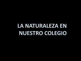 LA NATURALEZA EN  NUESTRO COLEGIO