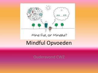 Mindful Opvoeden