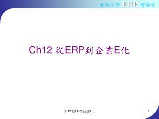 Ch12  從 ERP 到企業 E 化