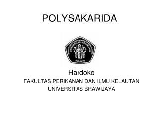 POLYSAKARIDA