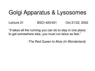 Golgi Apparatus & Lysosomes