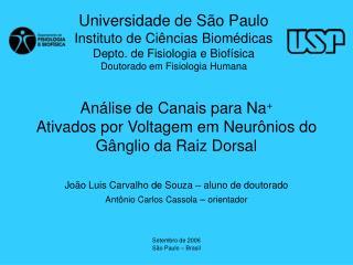 Análise de Canais para Na + Ativados por Voltagem em Neurônios do Gânglio da Raiz Dorsal