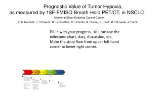 Prognostic Value of Tumor Hypoxia,  as measured by 18F-FMISO Breath-Hold PET/CT, in NSCLC
