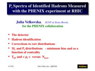P t  Spectra of Identified Hadrons Measured with the PHENIX experiment at RHIC