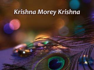 Krishna Morey Krishna