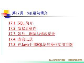 第 17 讲   SQL 语句简介