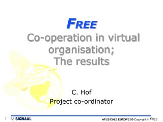 F REE  Co-operation in virtual organisation; The results