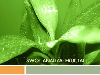 SWOT ANALIZA: FRUCTAL