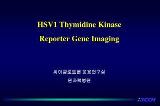 HSV1 Thymidine Kinase  Reporter Gene Imaging
