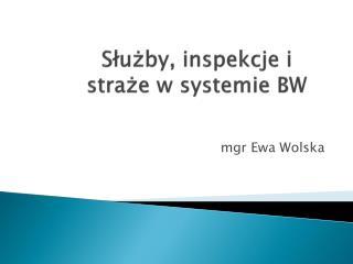 Służby, inspekcje i straże w systemie BW