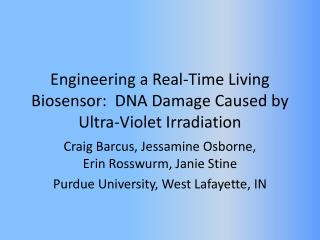 Engineering a Real-Time Living Biosensor:  DNA Damage  Caused  by  Ultra-Violet  Irradiation