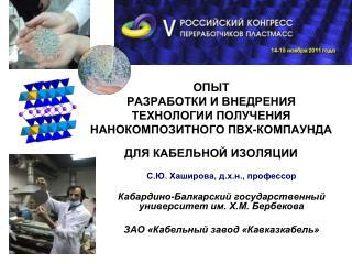 С.Ю. Хаширова, д.х.н., профессор