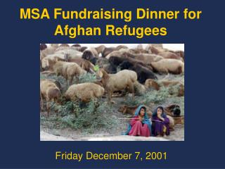 MSA Fundraising Dinner for Afghan Refugees