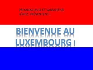 Bienvenue AU  luxembourg  !