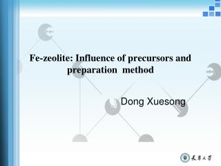 Fe-zeolite: Influence of precursors and preparation  method