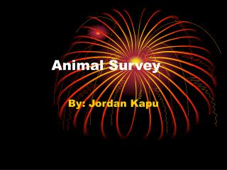 Animal Survey