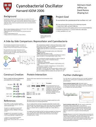 Cyanobacterial Oscillator Harvard iGEM 2006