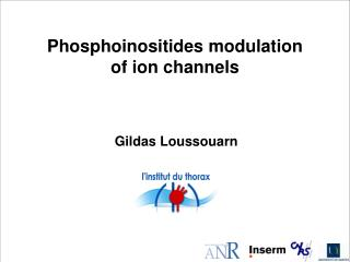 Phosphoinositides modulation  of ion channels